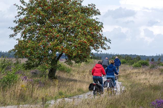 fietsroutes door duinalndschap in Nederland