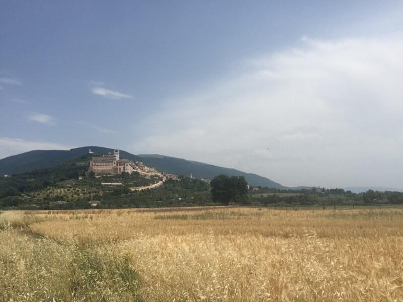 Assisi in de verte