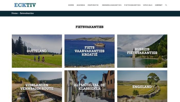 ECKTIV website