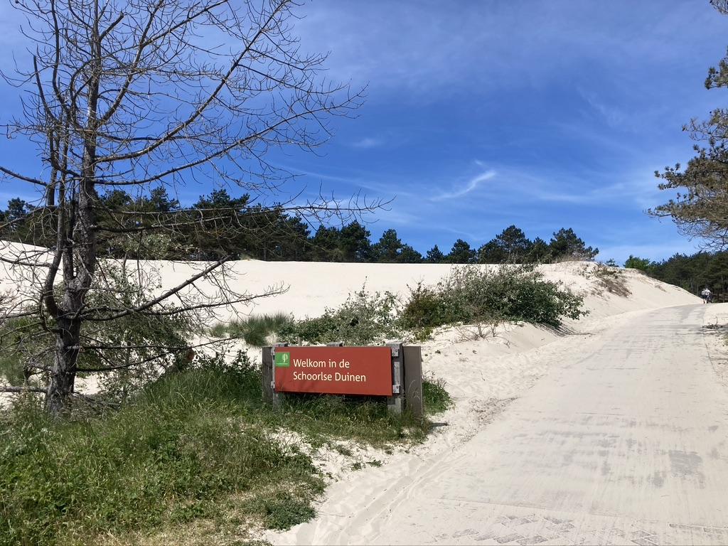 Schoorlse duinen