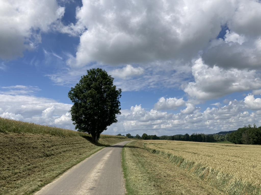 Fietsen in Noord-Frankrijk
